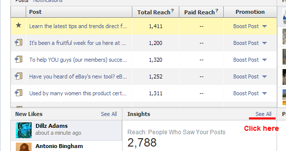 Facebook Insights page