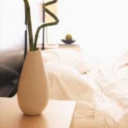 Hot market idea: Wholesale vases