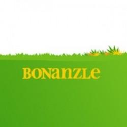 A Real eBay Alternative?  Bonanzle just got 1 million times better!