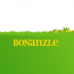 A Real eBay Alternative?  Bonanzle just got 1 million times better!