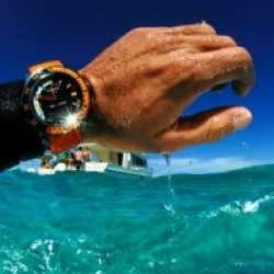 Diver's Watch: Monday Market of the Week