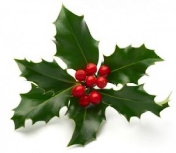 Merry Christmas from SaleHoo!